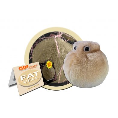 Giant Microbes, Fettcell